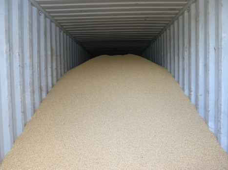 Loaded FG Bulk Container